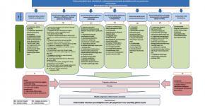 Strategia Zrównoważonego Rozwoju Lokalnego Dzierżoniowa to dokument planistyczny, w którym została określona wizja, misja oraz kierunki rozwoju Dzierżoniowa. Została on opracowana w 2014 roku, z perspektywą do roku 2020.